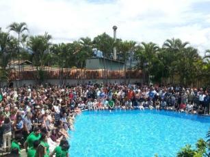 600 Bat researchers next to a pool. Image: @AusBats, Twitter.